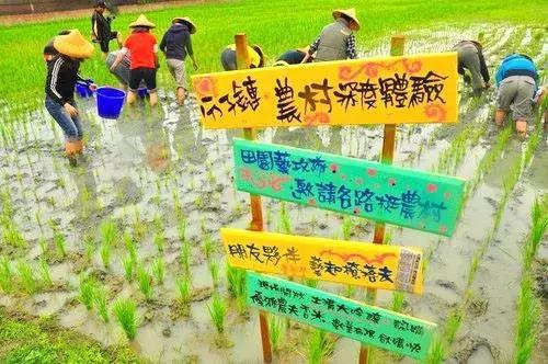 台湾社区营造_社区社会工作