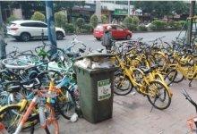 公共空间改善猎骑计划案例—社区社会工作